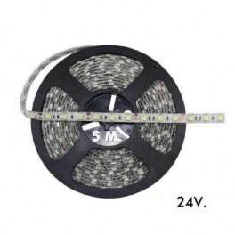 Fita LED MAXLED 24V 9.6W/m...
